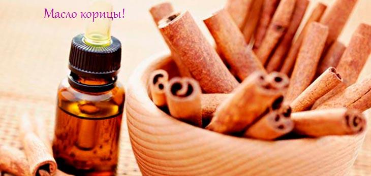 Чем полезно масло корицы?