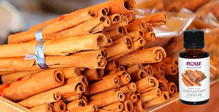 Полезные свойства эфирного масла корицы
