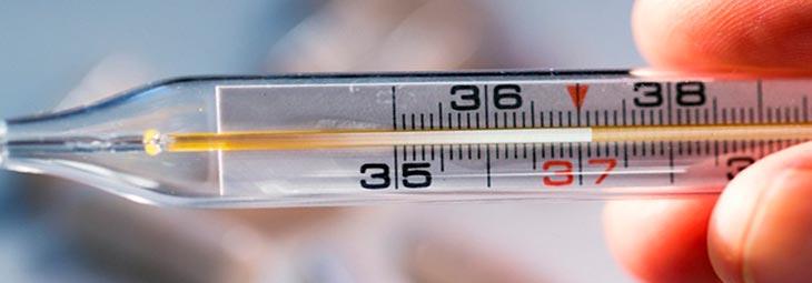 к какому врачу идти при температуре 37