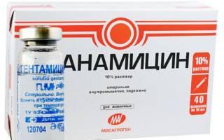 Препарат Канамицин