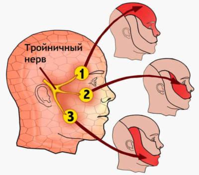 Что такое троичный нерв