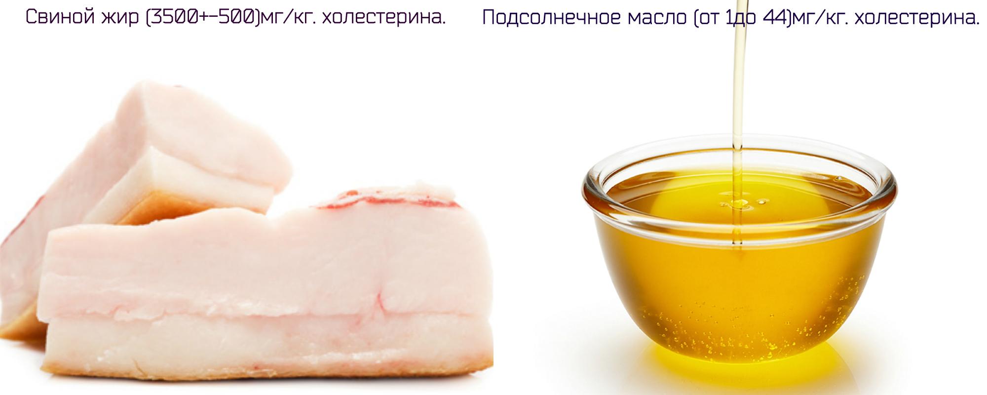 Холестерин в свином жире и подсолнечном масле