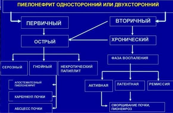Разновидности пиелонефрита