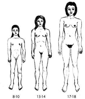 половое созревание девочек