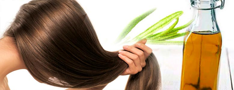 применение масла розмарина для волос