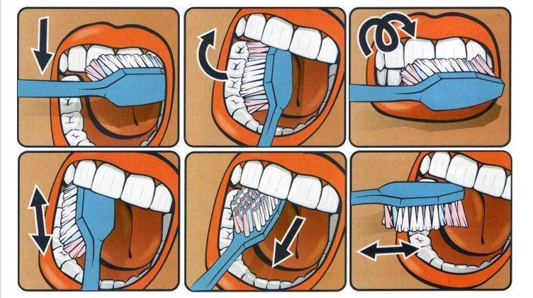 Как чистить зубы?